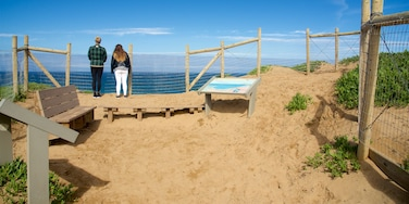 Fort Ord Dunes State Park which includes a beach and views