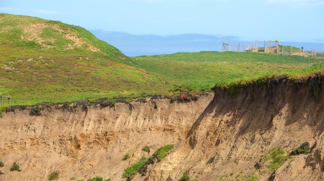 Fort Ord Dunes State Park que inclui cenas tranquilas