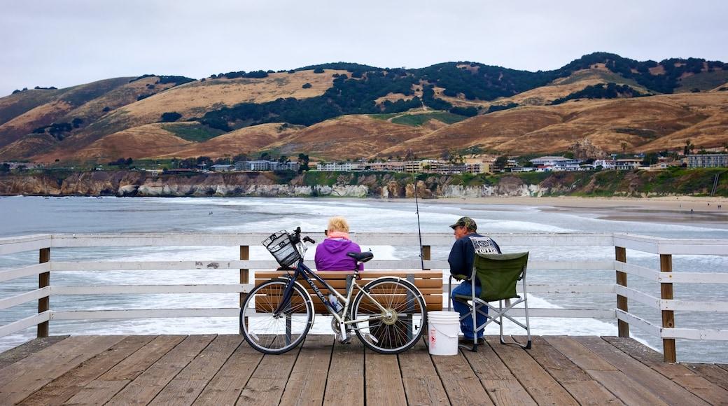 Pismo Beach Pier que inclui pesca assim como um pequeno grupo de pessoas