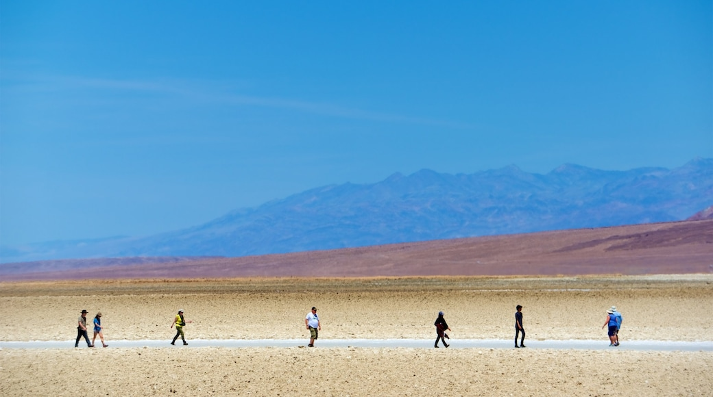 Vale da Morte mostrando paisagens do deserto e cenas tranquilas assim como um pequeno grupo de pessoas