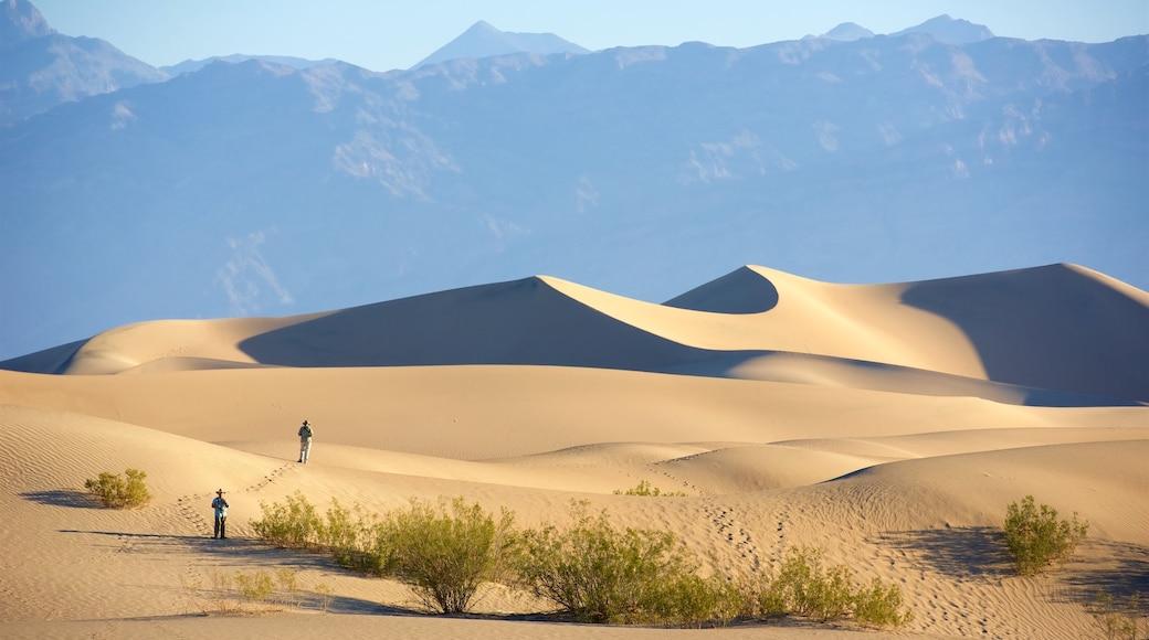 Death Valley som visar stillsam natur och skogslandskap såväl som ett par