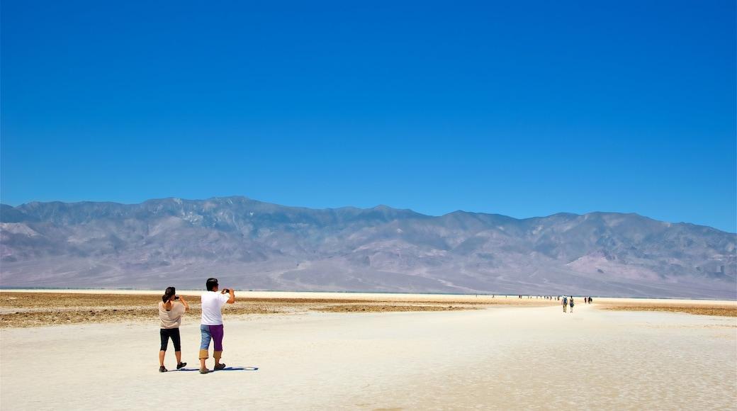 Parque Nacional de Death Valley caracterizando paisagens do deserto e paisagem assim como um casal