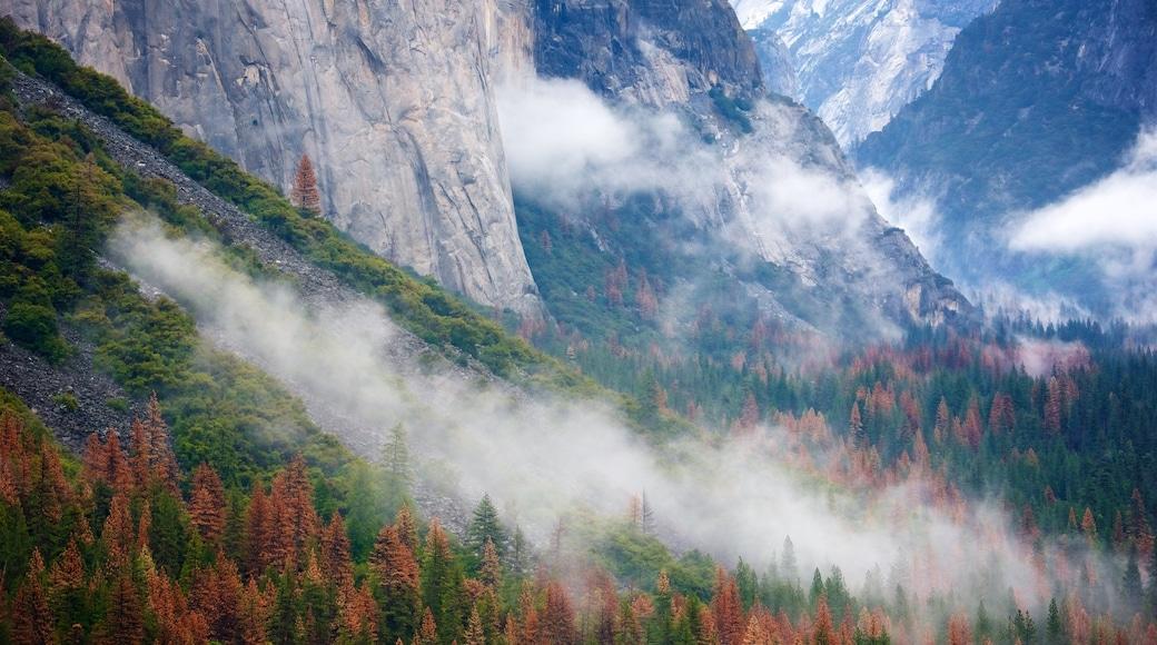 Tunnel View featuring syksyn lehdet, vuoret ja usvaa tai sumua