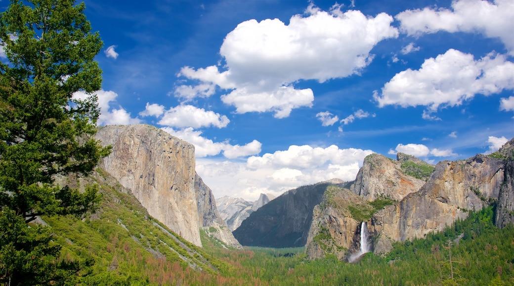 Tunnel View joka esittää maisemat, metsänäkymät ja vuoret