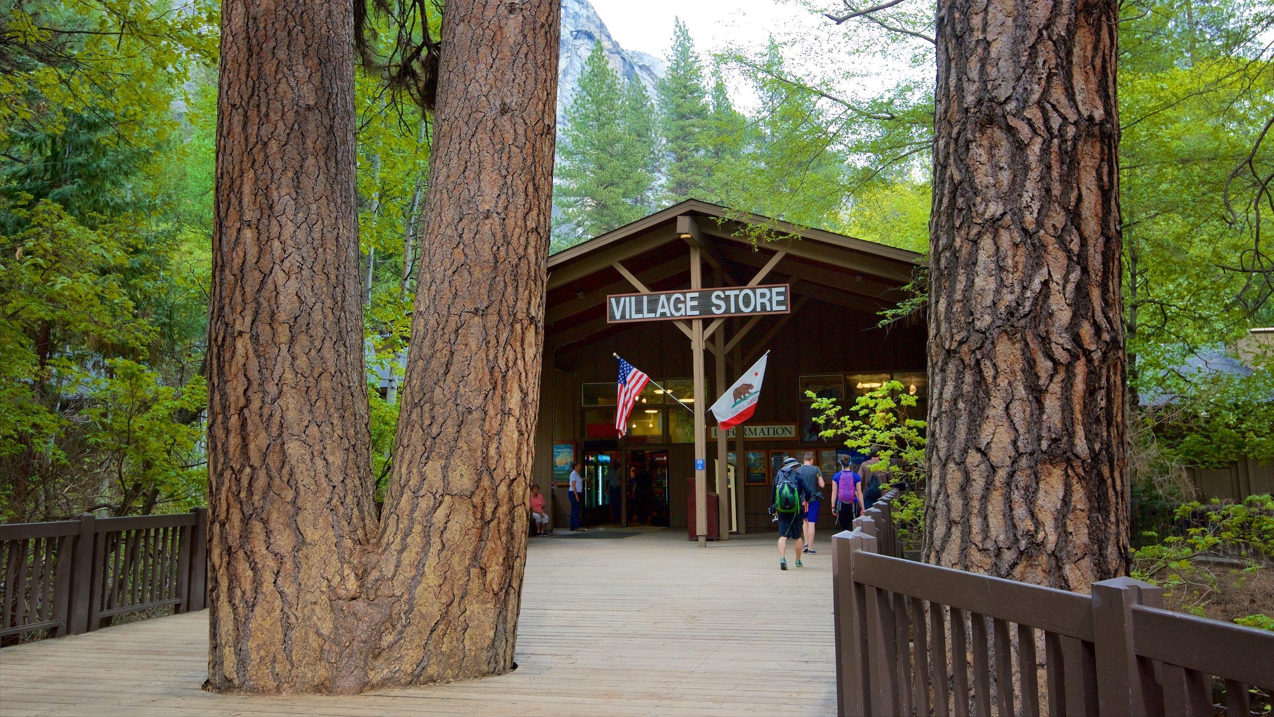 The 10 Best Hotels in Yosemite Village, Yosemite National Park $143