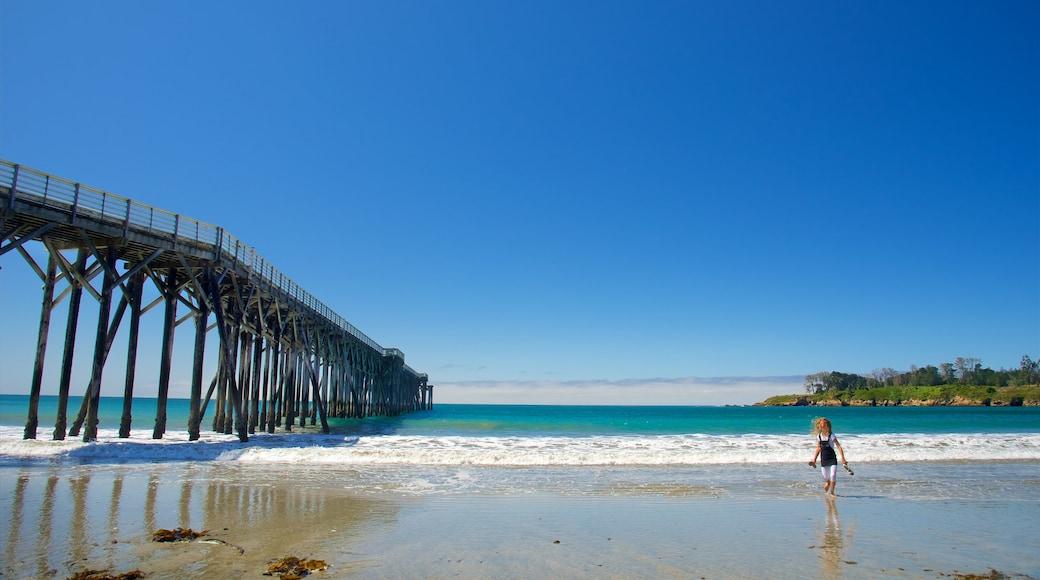 San Simeon Pier showing a beach