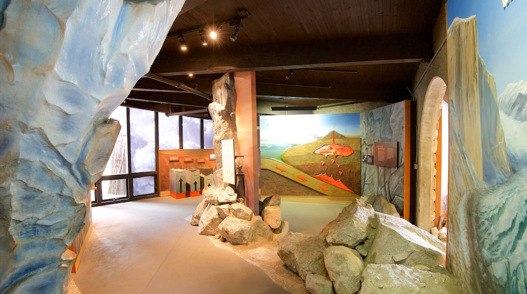 Yosemite Visitor Center which includes interior views