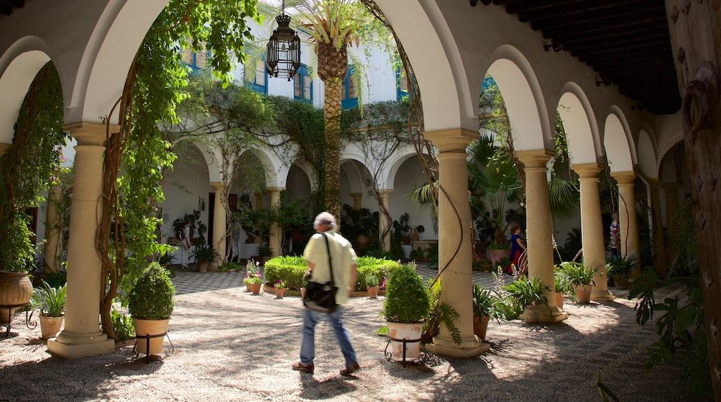 Palacio del Marqués de Viana ofreciendo una casa