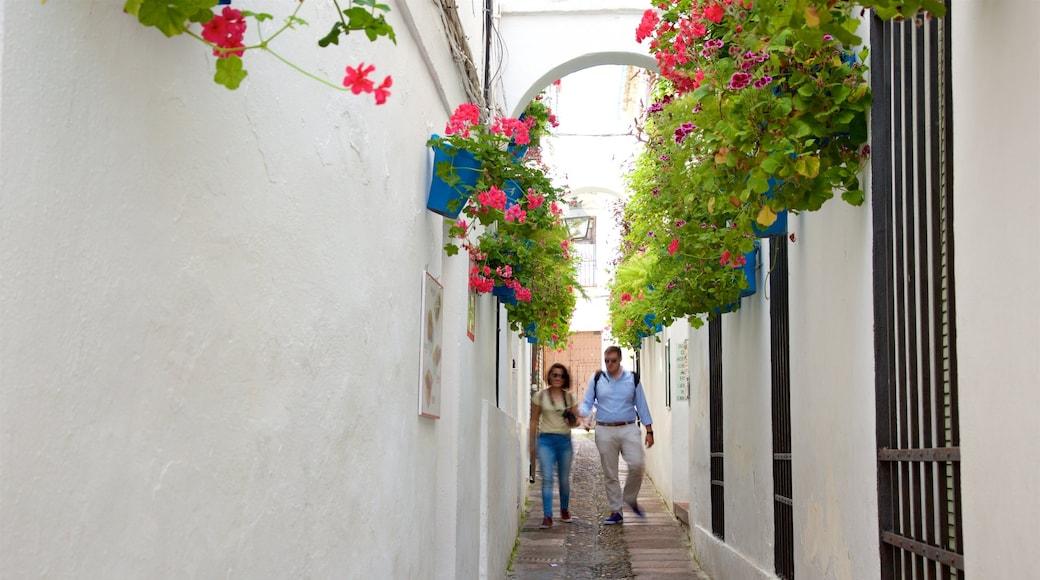 Córdoba ofreciendo escenas cotidianas y también una pareja