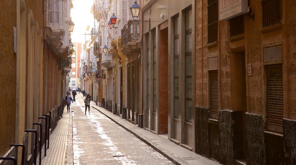 Cádiz que incluye escenas cotidianas