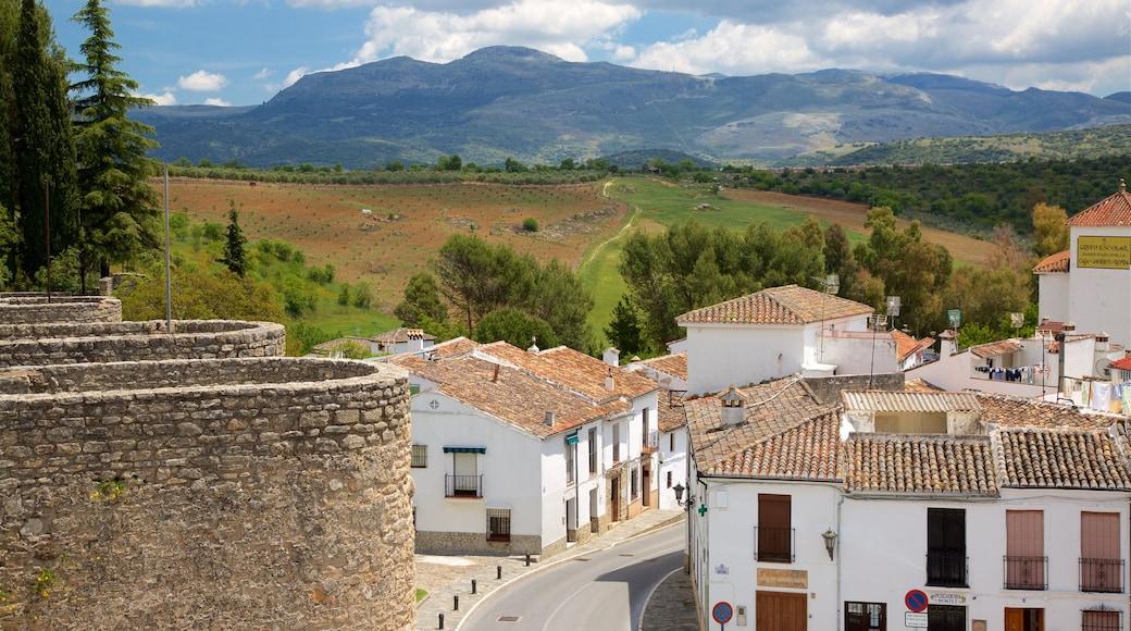 Puerta de Almocabar caratteristiche di piccola città o villaggio