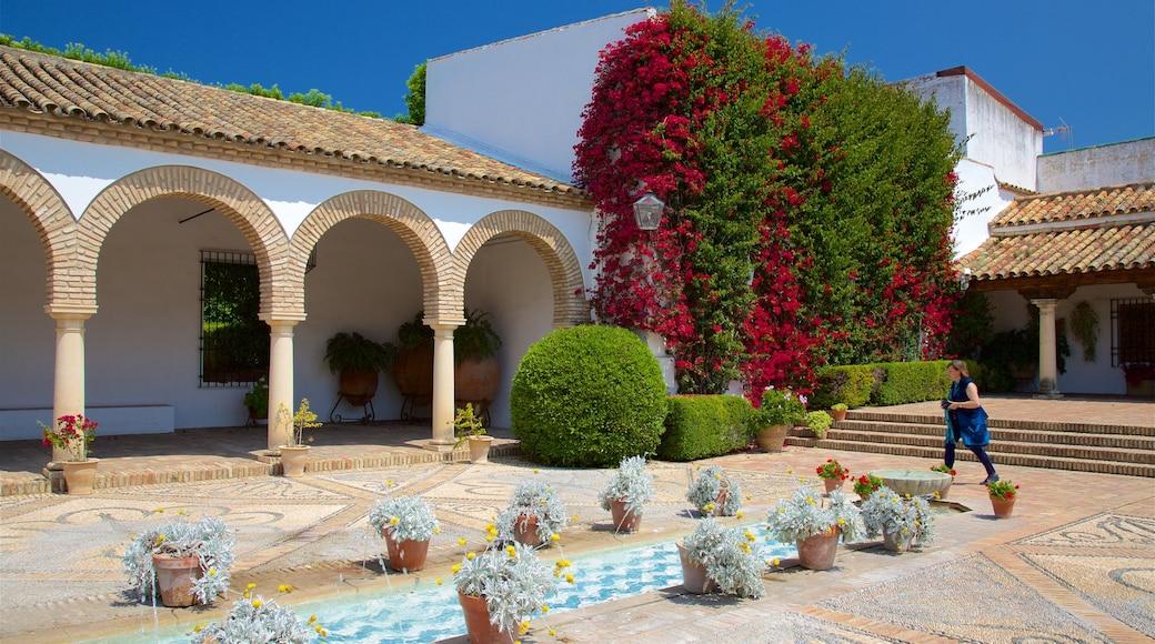 Palacio del Marqués de Viana ofreciendo una plaza