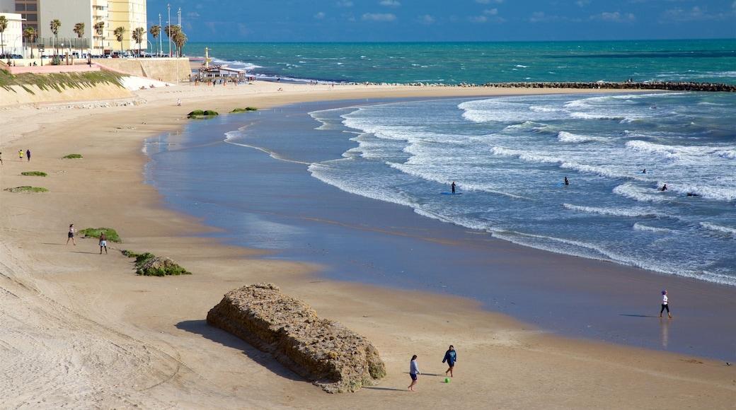 Victoria Strand das einen Bucht oder Hafen und Strand