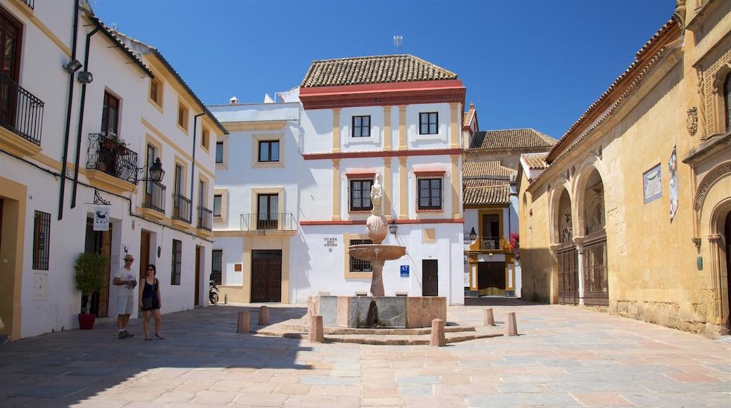 Plaza del Potro que incluye un pueblo y una plaza