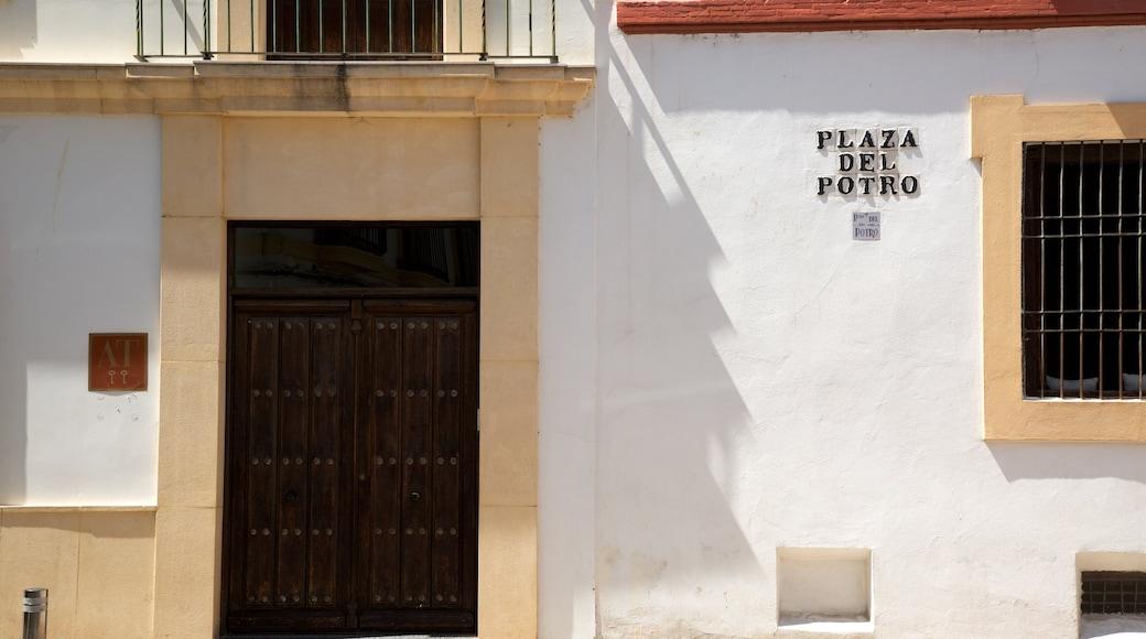 Plaza del Potro ofreciendo señalización y escenas cotidianas