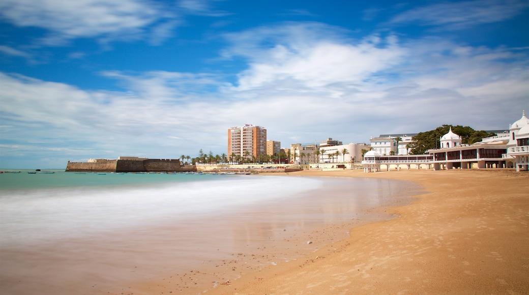 La Caleta Strand welches beinhaltet Bucht oder Hafen und Sandstrand