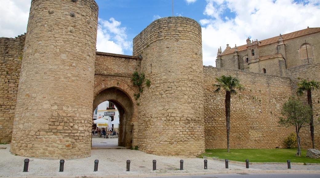 Puerta de Almocabar featuring heritage elements