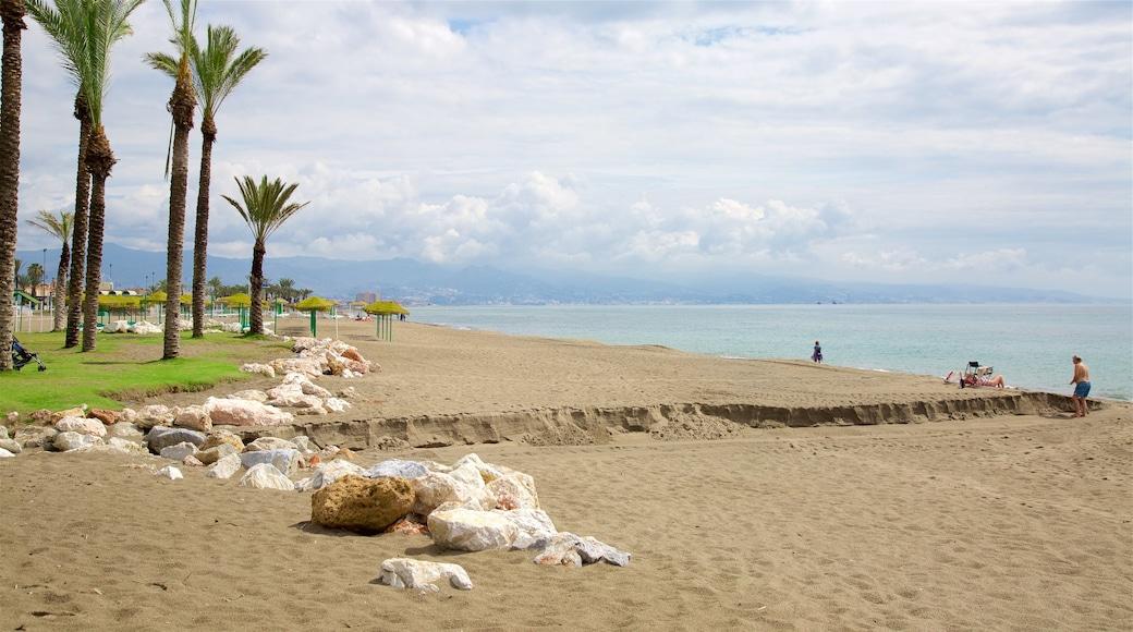 Playa Los Alamos bevat een strand