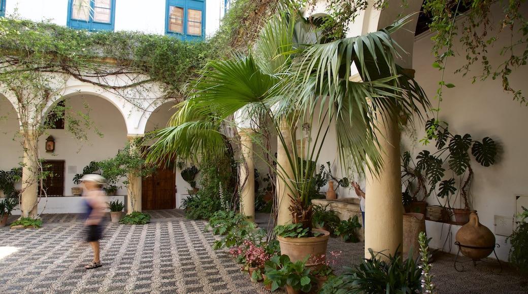 Palacio del Marqués de Viana ofreciendo palacio