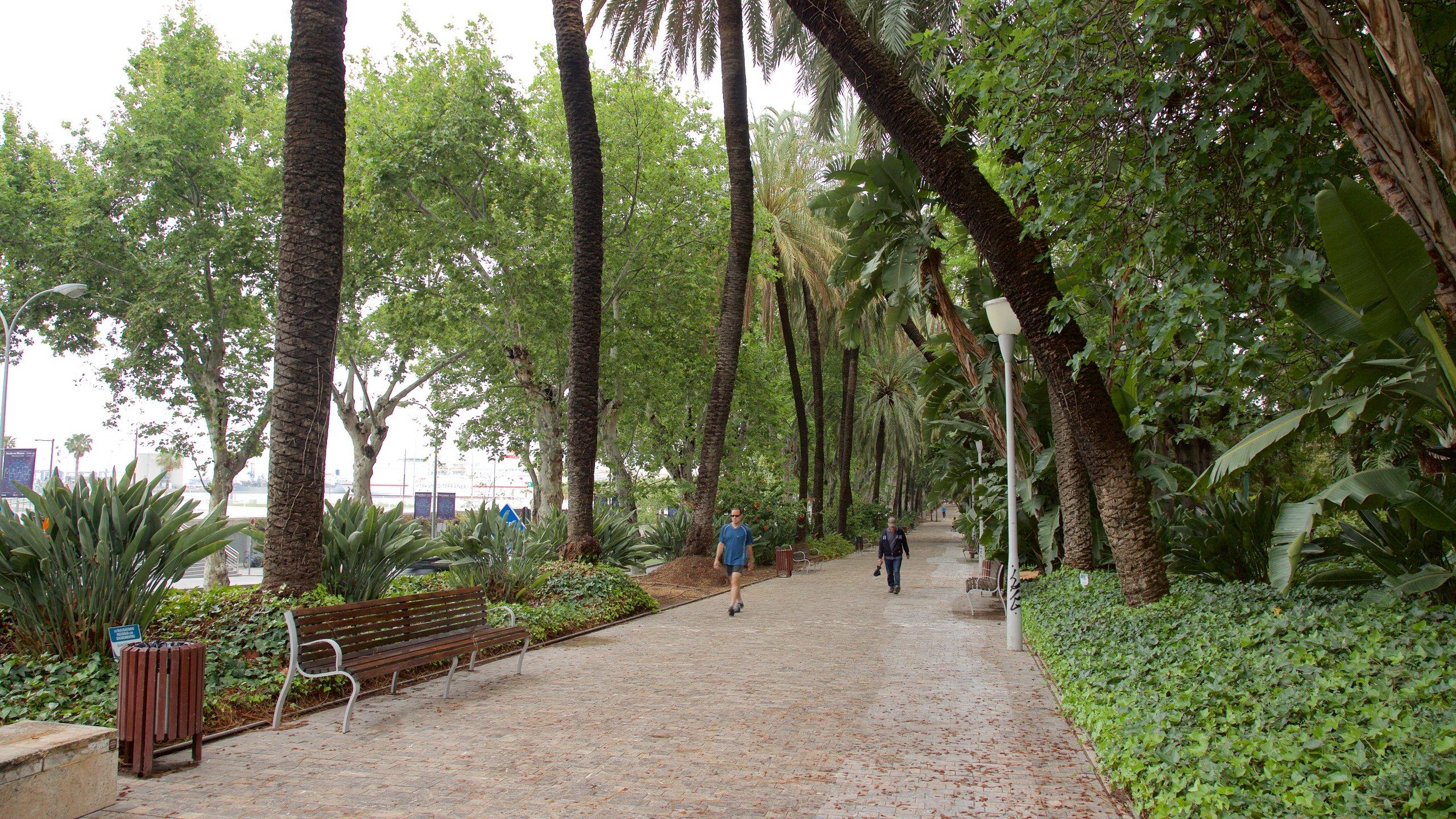 Ensanche Centro, Málaga, Andalusia, Spain