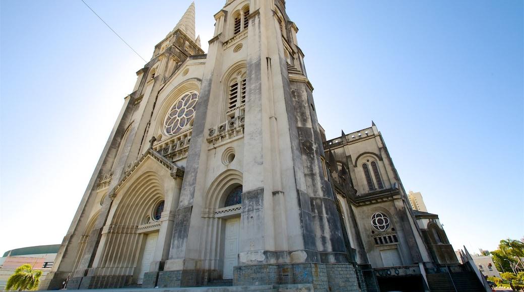 Catedral Metropolitana de Fortaleza mostrando una iglesia o catedral y imágenes de calles