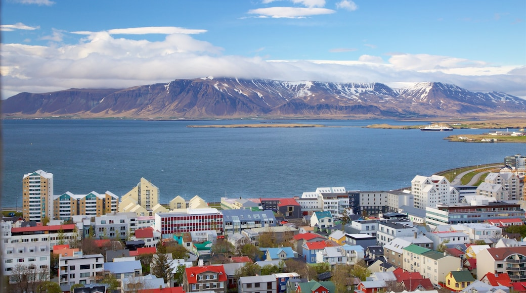 Reykjavik featuring general coastal views, a coastal town and mountains