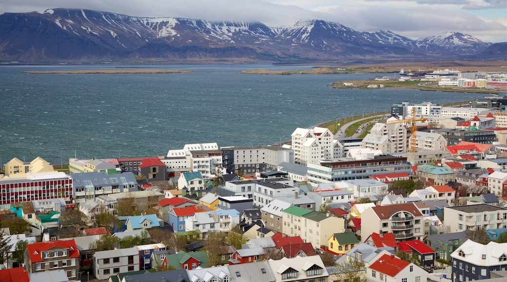 Reykjavik featuring a city, a coastal town and mountains