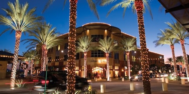 Scottsdale featuring street scenes, tropical scenes and night scenes