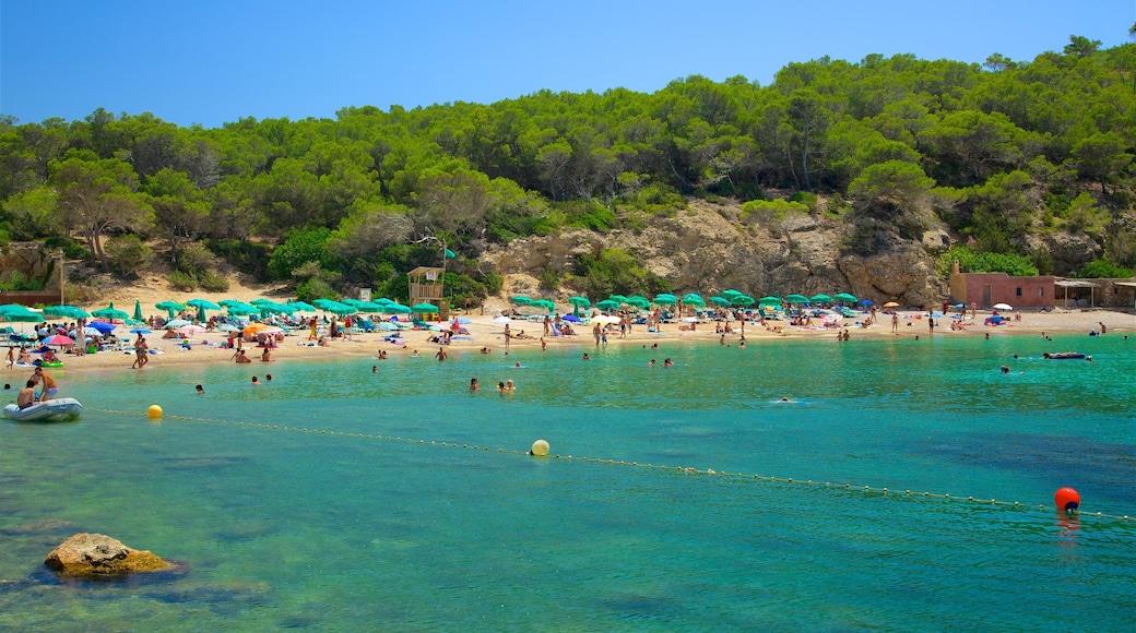 Ibiza che include vista della costa