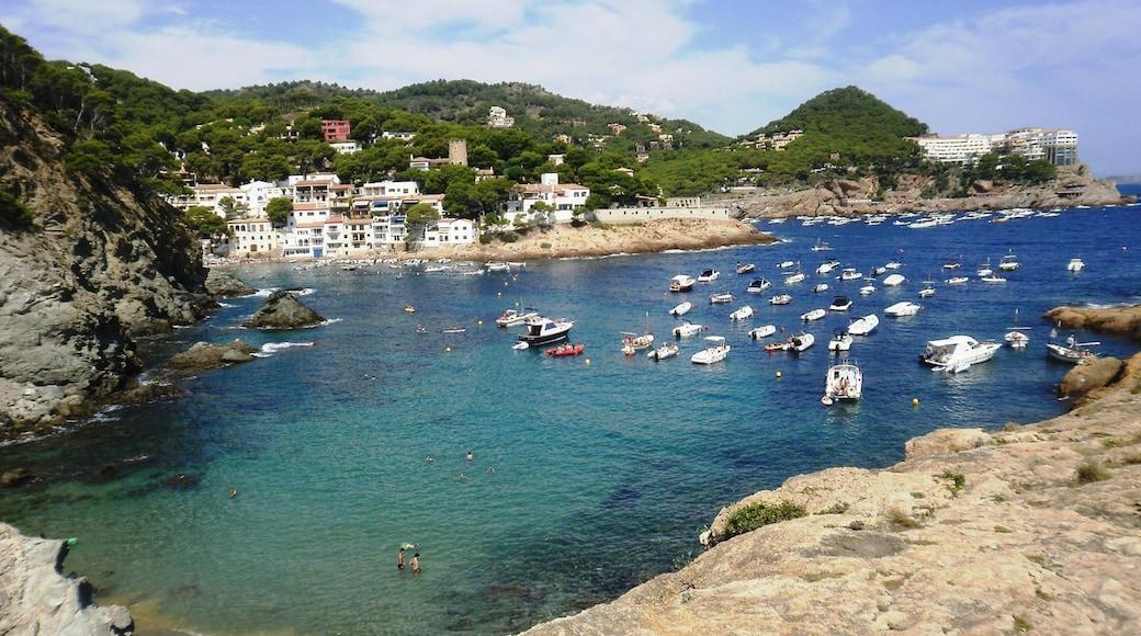 Girona som inkluderar klippig kustlinje, en kuststad och en hamn eller havsbukt