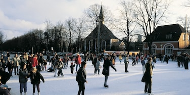 Frederiksberg which includes snow and ice skating as well as a large group of people
