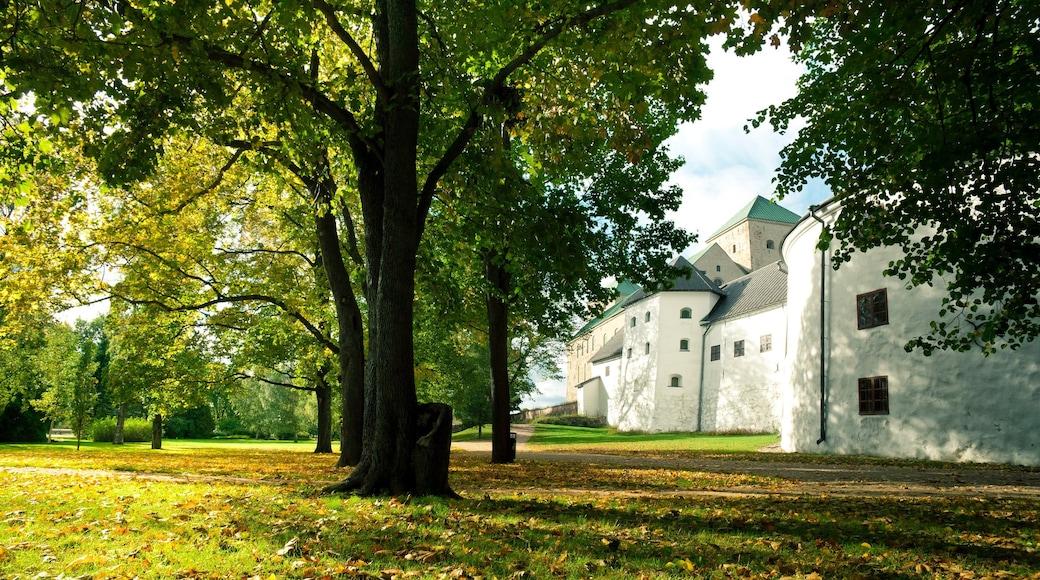 Turku featuring syksyn lehdet ja puutarha