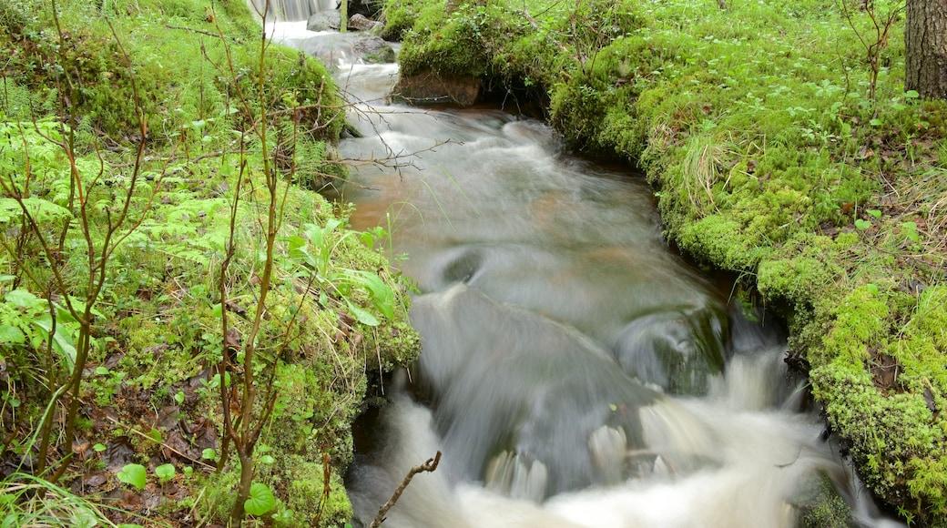 Äkäslompolo joka esittää joki tai puro ja suo