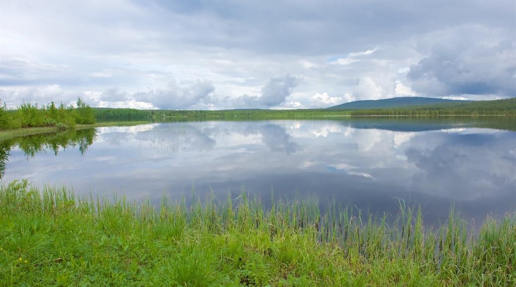 Äkäslompolo joka esittää suo ja järvi tai vesikuoppa