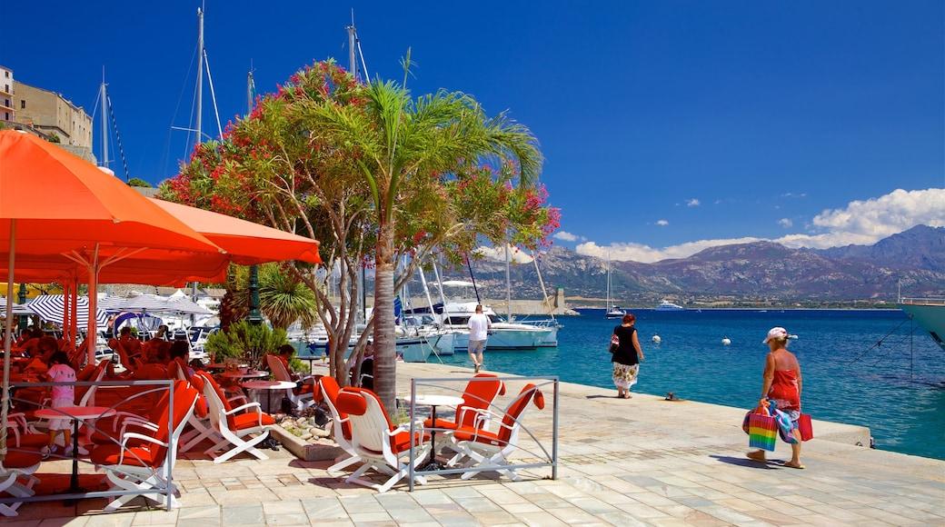 Corse du Nord mettant en vedette marina et baie ou port