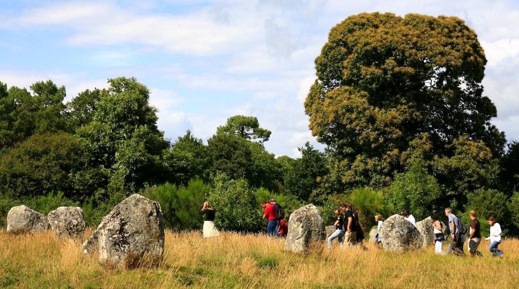 Carnac presenterar vandring såväl som en stor grupp av människor