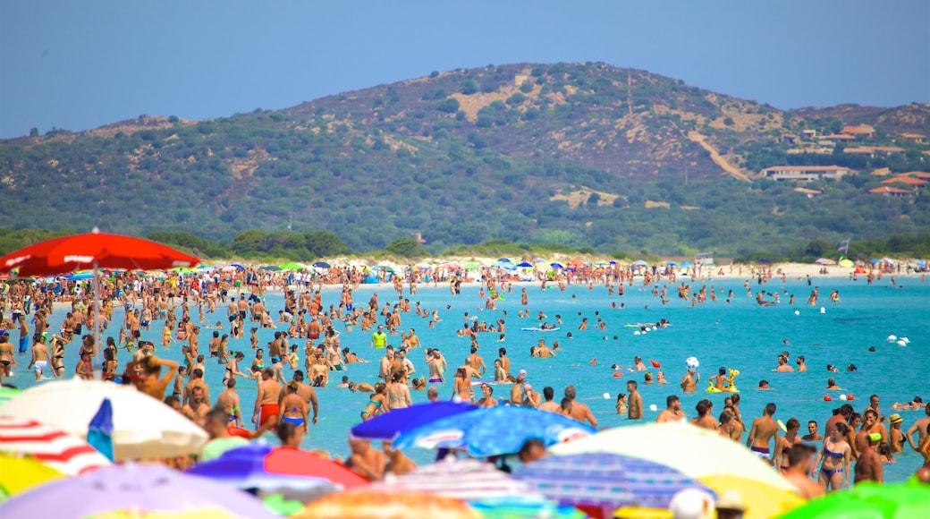 San Teodoro mostrando natación, una playa y vistas de una costa