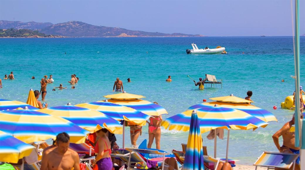 San Teodoro mostrando natación, vistas de una costa y una playa de arena
