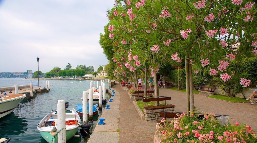 Gardone Riviera montrant baie ou port et fleurs sauvages