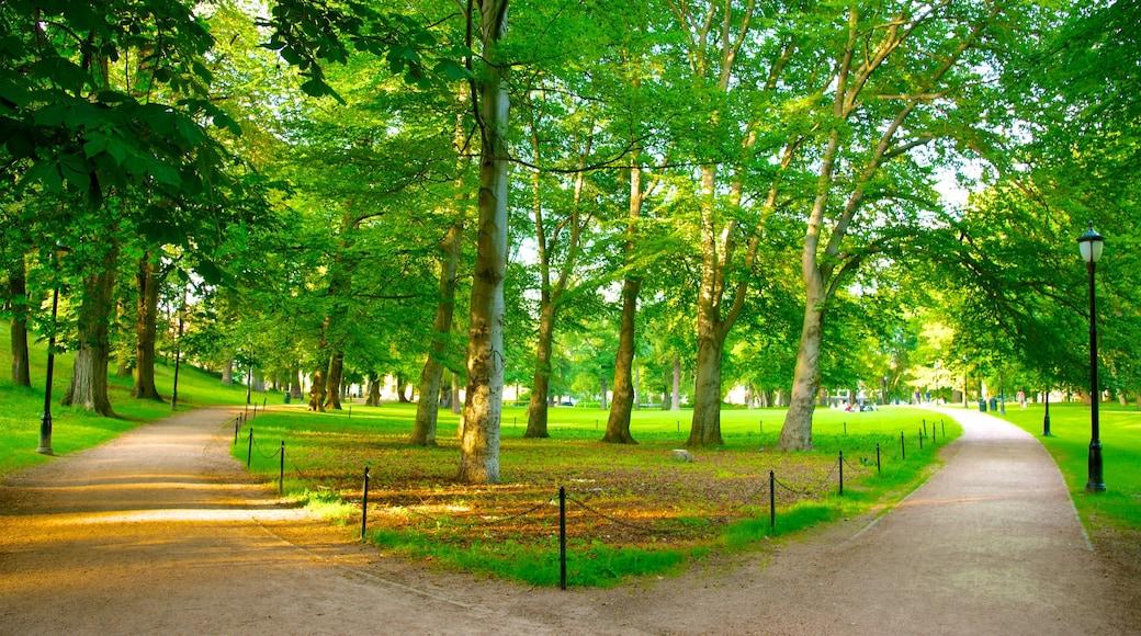 Schlosspark welches beinhaltet Garten