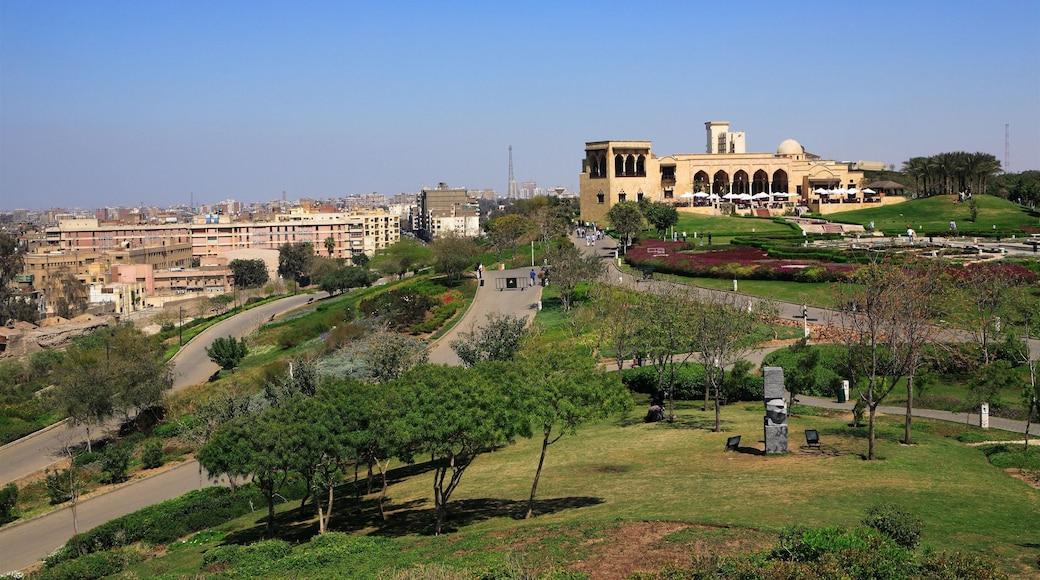 Egito que inclui um jardim e uma cidade