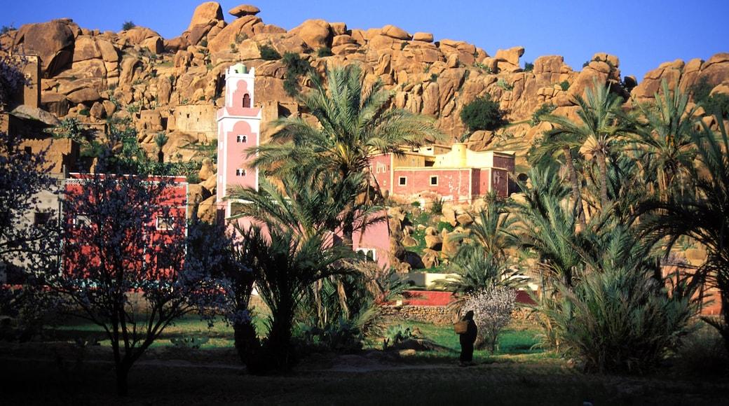 Marruecos que incluye un cañón o garganta y arquitectura patrimonial