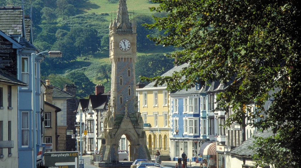 Machynlleth showing street scenes, a monument and a small town or village