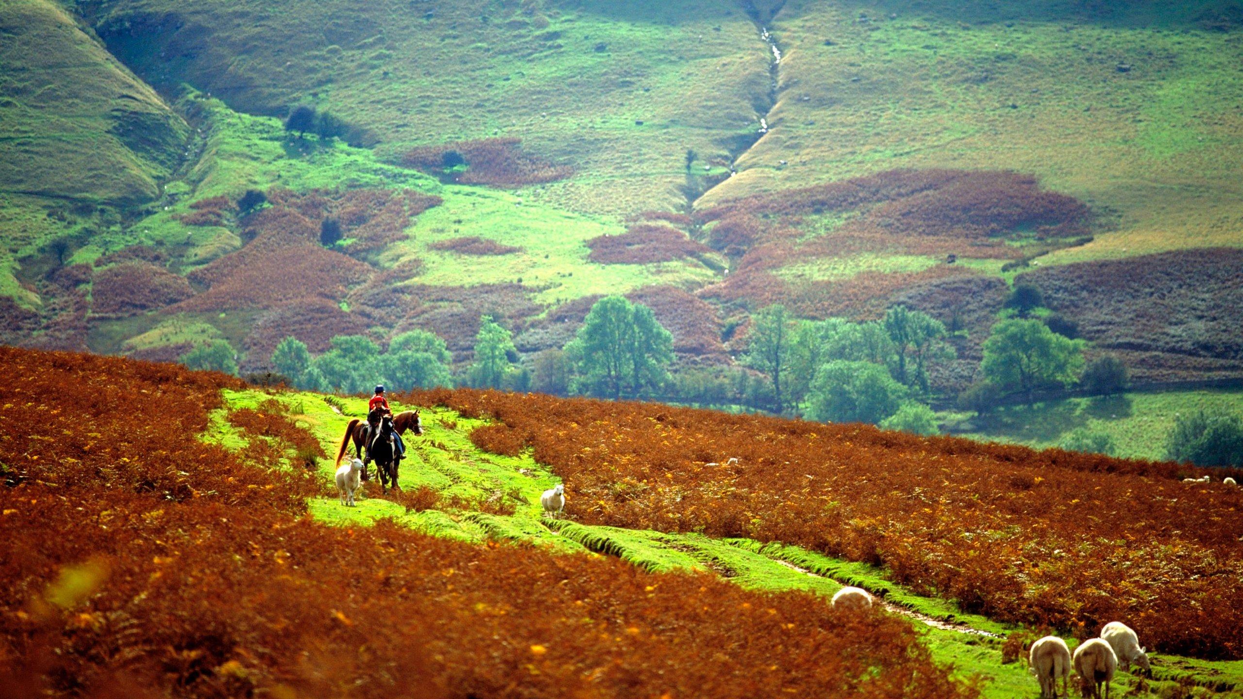 Powys, Wales, Yhdistynyt kuningaskunta