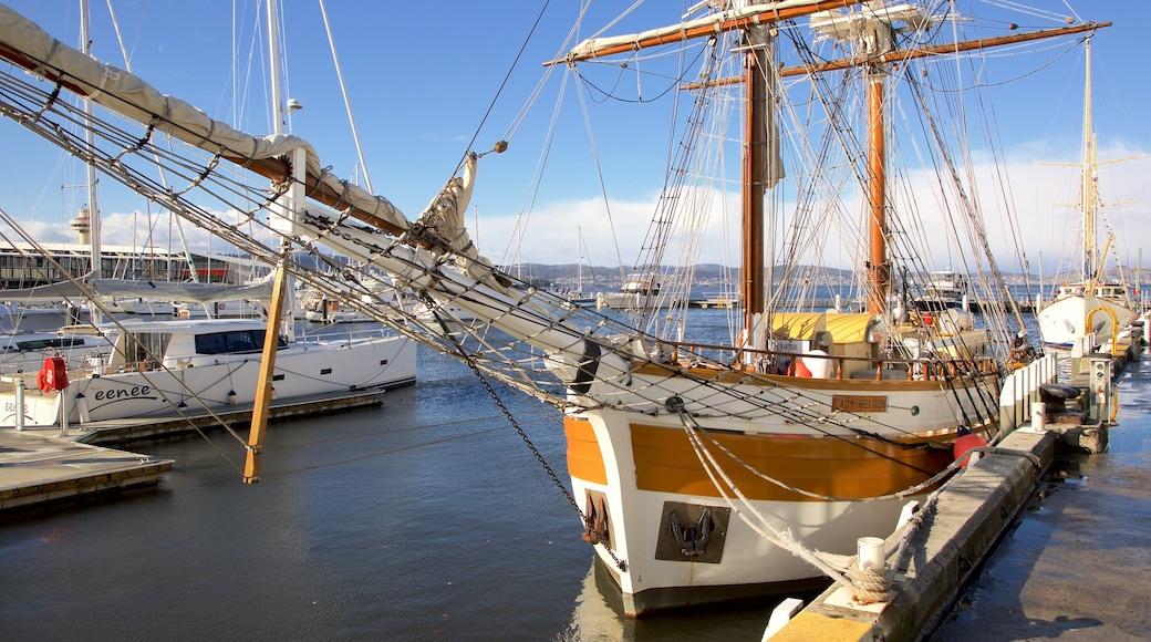 Hobart showing a marina
