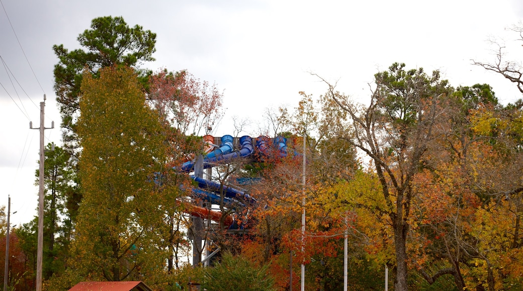 Splashtown which includes autumn leaves and a waterpark