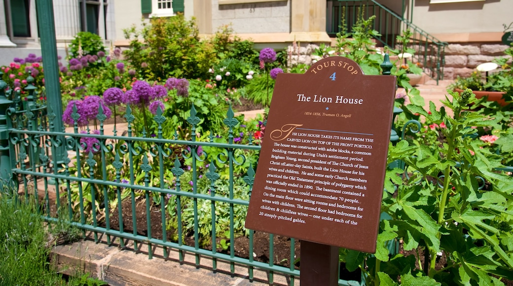 Lion House which includes signage and flowers