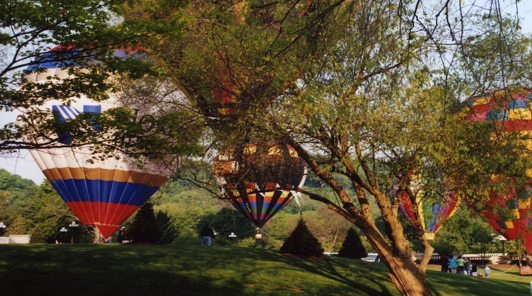 Lexington showing a garden and ballooning
