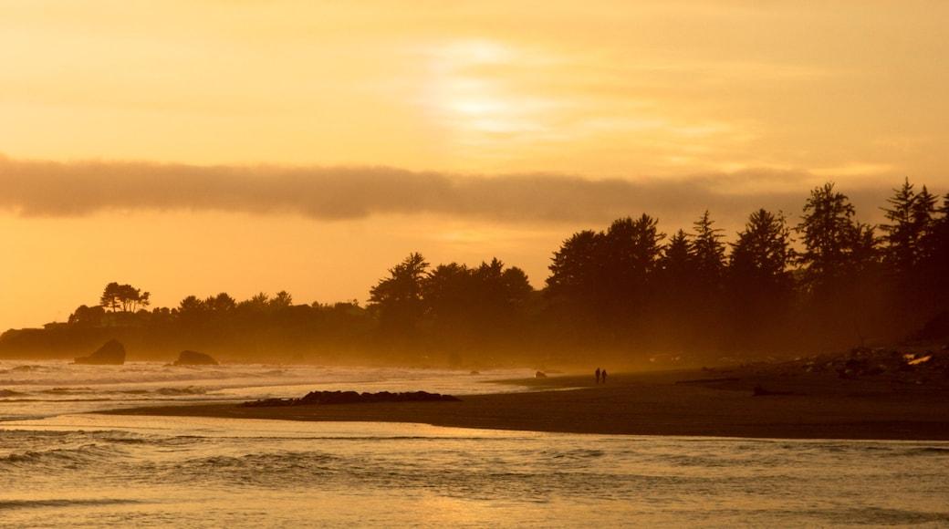 Parque nacional y parques estatales de Redwood que incluye vistas generales de la costa y una puesta de sol