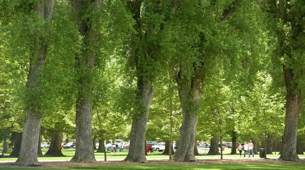 Liberty Park featuring a garden
